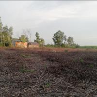 Đất lúa Phước Khánh 450 triệu/1000m2 nhanh tay cọc gấp nào khách ơi