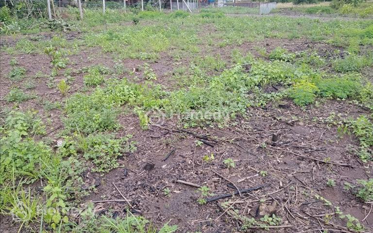 Bán đất ở xã lộ 25, huyện Thống Nhất, gần mặt đường 769