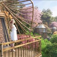 Sakana - Resort lộng lẫy giữa rừng hoa Tây Bắc