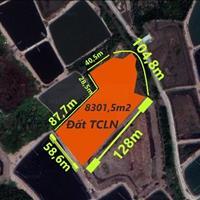 Cần bán đất mặt tiền xã An Thới Đông huyện Cần Giờ đất trồng cây lâu năm chỉ 1,5 triệu/m2