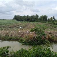 Chủ cần tiền bán gấp đất mặt tiền sông lớn Nhơn Trạch sát quận 2, giá rẻ 750 triệu/1000m2 sổ riêng