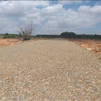Bán đất nền gần Quốc lộ 1A, tỉnh Bình Thuận diện tích 1000m2/nền, giá 570 triệu