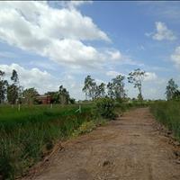 Cần bán lô đất vườn chính chủ tại ấp Tràm Lạc, huyện Đức Hòa, Long An, giá đầu tư