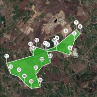 Bán đất diện tích lớn tại Bình Thuận phù hợp làm trang trại