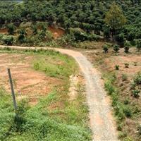 Khu nghỉ dưỡng 3,6 ha, view đồi, đường lớn, cách trung tâm Bảo Lộc 13km