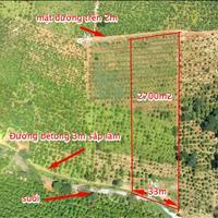 Khu nghỉ dưỡng 2700m2 view Đồi Suối cách trung tâm Bảo Lộc 10km
