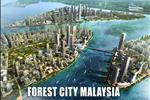 Dự án Forest City TP Hồ Chí Minh - ảnh tổng quan - 5