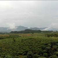 Khu nghỉ dưỡng 2000m2, view đỉnh núi nhìn ra Quốc lộ 20, cách trung Bảo Lộc tầm 6 km