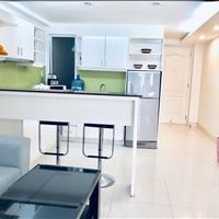 Căn hộ cho thuê đầy đủ nội thất Trần Đình Xu, Quận 1