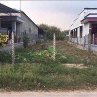Gia đình tôi cần bán gấp lô đất ở Bàu Bàng 250m2 giá 390 triệu