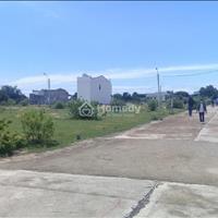 Bất động sản Ninh Thuận tăng nhiệt bất ngờ khiến các nhà đầu tư đổ dồn về đầu tư đất biển Cà Ná
