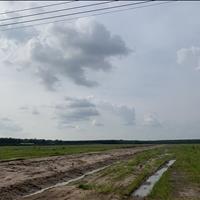 Hiện tại nhà em đang có 1 lô đất hơn 1000m2 giá chỉ 530 triệu cần bán