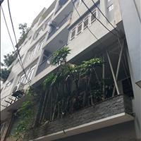 Bán nhà riêng quận Ba Đình - Hà Nội, giá 4.8 tỷ