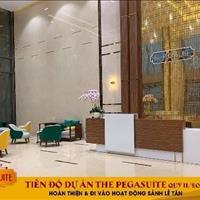 Cần tiền bán nhanh căn hộ The PegaSuite, view Tây Bắc, giá 2,3 tỷ bao toàn bộ phí