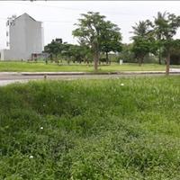 Bán gấp đất ở xã Tân Lân, Cần Đước, giá chỉ 499 triệu, sổ riêng