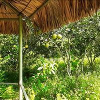 Bán đất nghỉ dưỡng giá rẻ tại Hợp Hòa, Lương Sơn, Hòa Bình