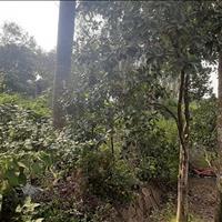 Sở hữu ngay lô đất 2 mặt tiền tại Hòa Sơn, Lương Sơn, Hòa Bình