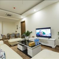 Thuê ngay căn hộ cao cấp Golden Palm 4 phòng ngủ cực đẹp chỉ với 20 triệu/tháng