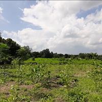 Bán đất giá cực rẻ tại Cư Yên Lương Sơn Hòa Bình