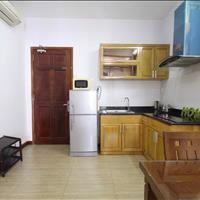 Cho thuê căn hộ 1 phòng ngủ full nội thất tại Nguyễn Đình Chiểu, Quận 1