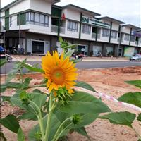 Bán căn biệt thự vườn tại dự án Oasis City, Bến Cát, Bình Dương diện tích 80m2, giá 1.38 tỷ
