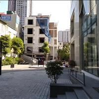Chính chủ cần bán gấp căn 3 phòng ngủ tòa A chung cư Thống Nhất Complex 82 Nguyễn Tuân