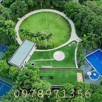 Chính chủ gửi bán căn kinh doanh vị trí đẹp, giá siêu tốt - Ecopark Hải Dương