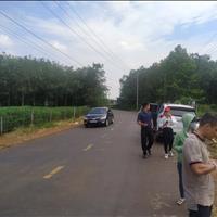 Bán đất huyện Đất Đỏ - Bà Rịa Vũng Tàu giá 800 triệu