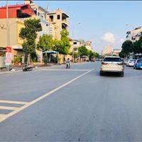 Bán 66m2 mặt đường Ngô Xuân Quảng, Trâu Quỳ, Gia Lâm kinh doanh được đường 30m
