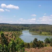 11 ha đất đẹp trồng cao su sầu riêng và na điện nước đầy đủ mặt tiền