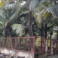 Bán gấp 524m2 đất Nhị Bình gần bờ bao sông Sài Gòn mở đường 12m mua là lời