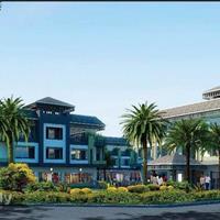 Cơ hội đầu tư sinh lời cao, an toàn đến 20% khi sở hữu biệt thự biển Tropical Ocean Villa & Resort