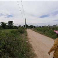 Bán 4000m2 đất cây lâu năm gần mương Nhựt đường xe tải, An Hải, Ninh Phước, Ninh Thuận