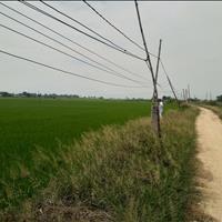 Bán thửa đất nông nghiệp 4040m2 gần quốc lộ 1A, đường xe tải, Ninh Phước, Ninh Thuận 650 triệu/sào