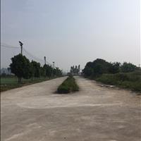 Bán 50m2 đất nền phân lô Quốc Oai Hà Nội giá chỉ 500 triệu