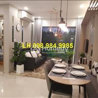 Bán suất ngoại giao căn hộ 2 phòng ngủ +1 ở Vinhomes Smart City giá chỉ 1.656 tỷ