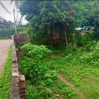 Nghỉ dưỡng thì hết chê, đất nhà vườn 1300m2 đất thôn 7 xã Phú Cát giá chỉ 3,5 triệu/m2