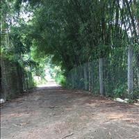 Bán gấp căn nhà vườn 1027m2 sát Quốc lộ 1A thị trấn Dầu Giây 2 mặt tiền