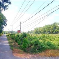 Bán 30 hecta đất mặt tiền Phạm Thái Bường, Nhơn Trạch, giá bán 35 tỷ/hecta