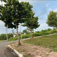 Đất thổ sân bay Lộc An 1000m2, Đất Đỏ, Bà Rịa Vũng Tàu