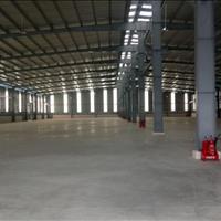 Dịch vụ cho thuê kho của Nhất Việt Logistics - Khu công nghiệp Sóng Thần, Bình Dương