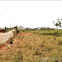Bán đất nền đầu tư tại huyện Lạc Dương, Lâm Đồng