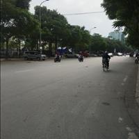 Đầu tư siêu lợi nhuận phố Linh Lang, Ba Đình, 179m2, mặt tiền 10m, xây chung cư, Homestay, 21.6 tỷ