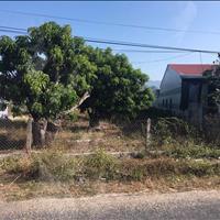 Cần tiền gấp bán lại lô đất vườn 1564m2, 1.5 tỷ có ao cá, đường Cây Trôm, Thái Mỹ, Củ Chi