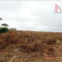 Đất đầu tư sinh lợi cao, diện tích lớn giá rẻ chỉ có tại Măng Lin, Đà Lạt