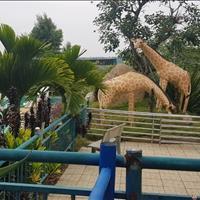 Nhượng lại lô đất nền ở Đồng Phú, Bình Phước - 150m2 - Giá chỉ 295 triệu/nền