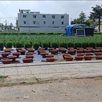 Bán đất Bà Rịa - Bà Rịa Vũng Tàu giá chỉ 1 tỷ