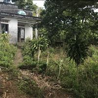 Bán đất chính chủ tại đường Phó Đức Chính, X. Đambri, TP. Bảo Lộc, Lâm Đồng, giá đầu tư