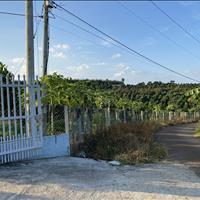 Bán gấp đất ở chính chủ tại Nhân Nghĩa, huyện Cẩm Mỹ, Tỉnh Đồng Nai. Giá mềm