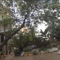 Bán 5 lô đất chính chủ trong khu dân cư Đại Phúc Green Villas, Bình Hưng, Bình Chánh, 100m2